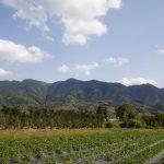 Mino_mountain_range